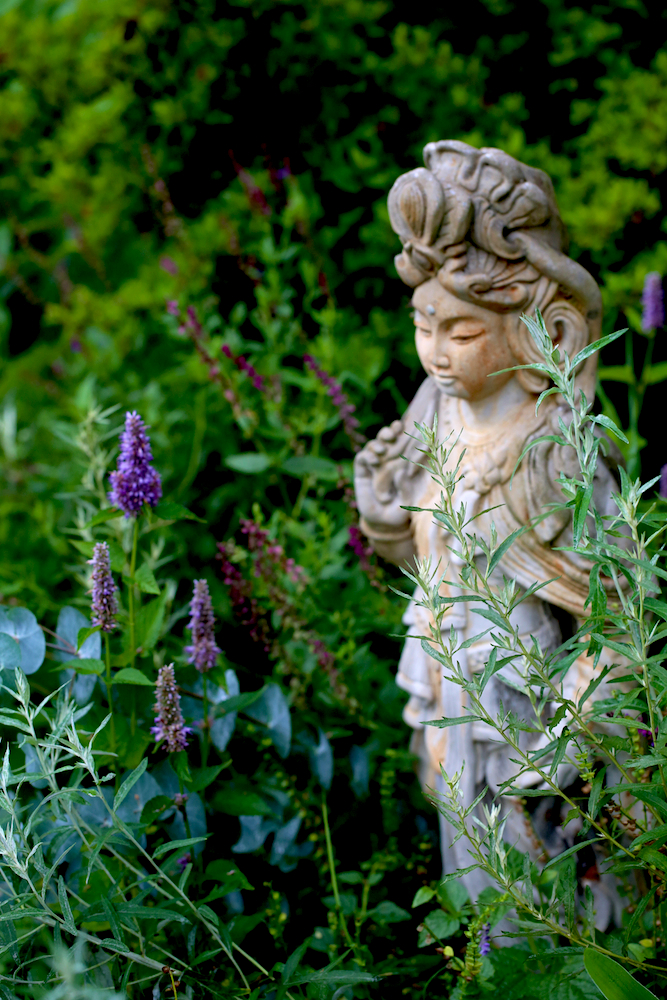 9 Tips for Planning the Herb Garden of Your Dreams - anise hyssop, mugwort, and eucalyptus