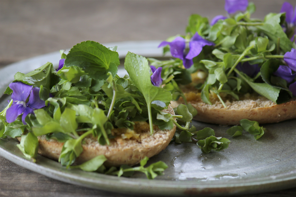 Fresh violet and chickweed on a bagel with garlic sauce